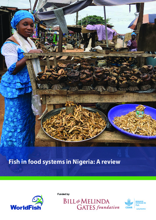 Fish in food systems in Nigeria: A review